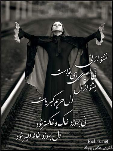 عکس تصویر تصاویر پیچک ، بهاربیست Www.Bahar-20.com